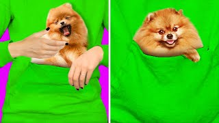 23 CUTE HACKS WITH PETS