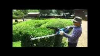 36V Cordless Hedge Trimmer