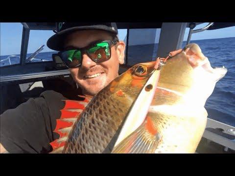 REEF FISHING LUCINDA | Pith Reef.