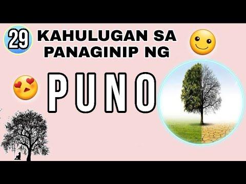 #44 KAHULUGAN SA PANAGINIP NG PUNO / DREAMS AND MEANING OF TREE