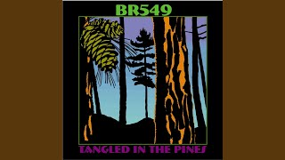 Play Br 549: Ain't Got Time