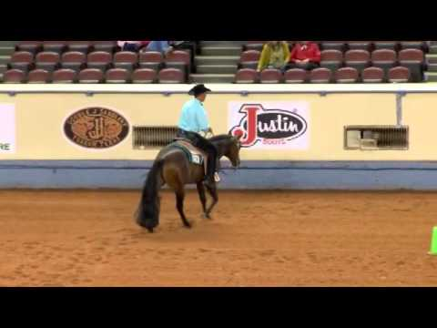 Definitely All That - 2014 AQHA World - Jr Western Riding- Prelim