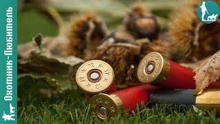 сколько нужно патронов, чтобы проверить бой ружья? Охотник-Любитель