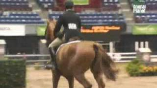 Horse Power - Road to the Maclay ---Episode 6(5)