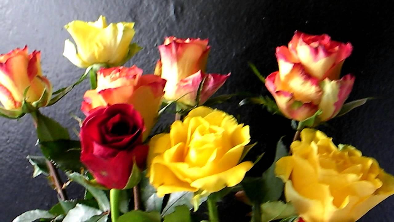 nice flowers, Beautiful flower