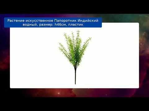Растение искусственное Папоротник Индийский водный, размер: h46см, пластик