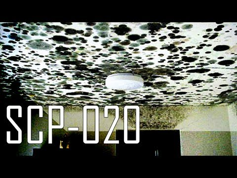 SCP020  YouTube