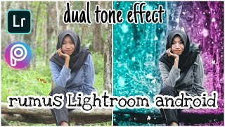 DUAL TONE EFFECT-LIGHTROOM CC MOBILE TUTORIAL_SNOW EFFECT BY PICART