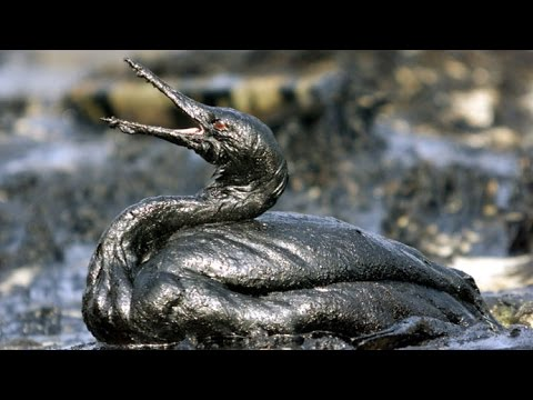 Gulf of Mexico suffers third oil spill in two weeks