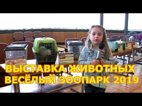 """Выставка животных """"Весёлый зоопарк"""" 2019"""