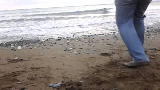 Surf Casting Samandağ - Çupra Avı