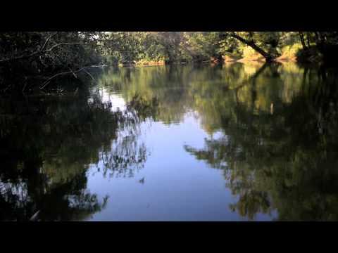 Tanners Creek Run