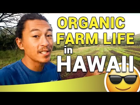Organic FarmLife Hawaii 2018! Come Join Us!