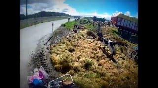 Dairy farm New Zealand 2014/2015