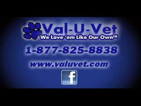 ValUVet New Commercial for 2012