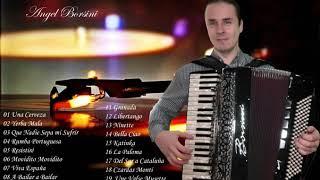 Musica de acordeon angel borsini