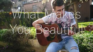 (One Direction) What Makes You Beautiful - Fingerstyle Guitar Cover