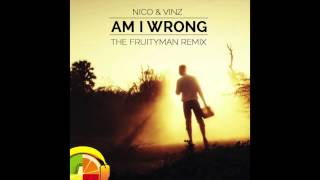 nico vinz am i wrong the fruityman remix