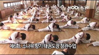 [무카스 특별기획] 제6화 - 소나무 향기 태권도장 참관수업
