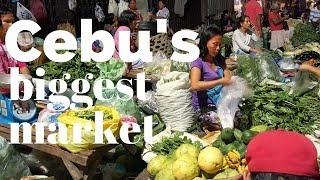How to Shop in Carbon Market Cebu City