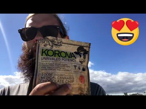 Marijuana Edible Review: Korova Chocolate Chip Cookie 150 mg