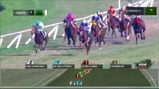 Vidéo de la course PMU PREMIO VECTORIAL