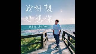 我好想好想你 Missing You - JAY CHUA Cover 蔡戔倡 / 蔡尖倡