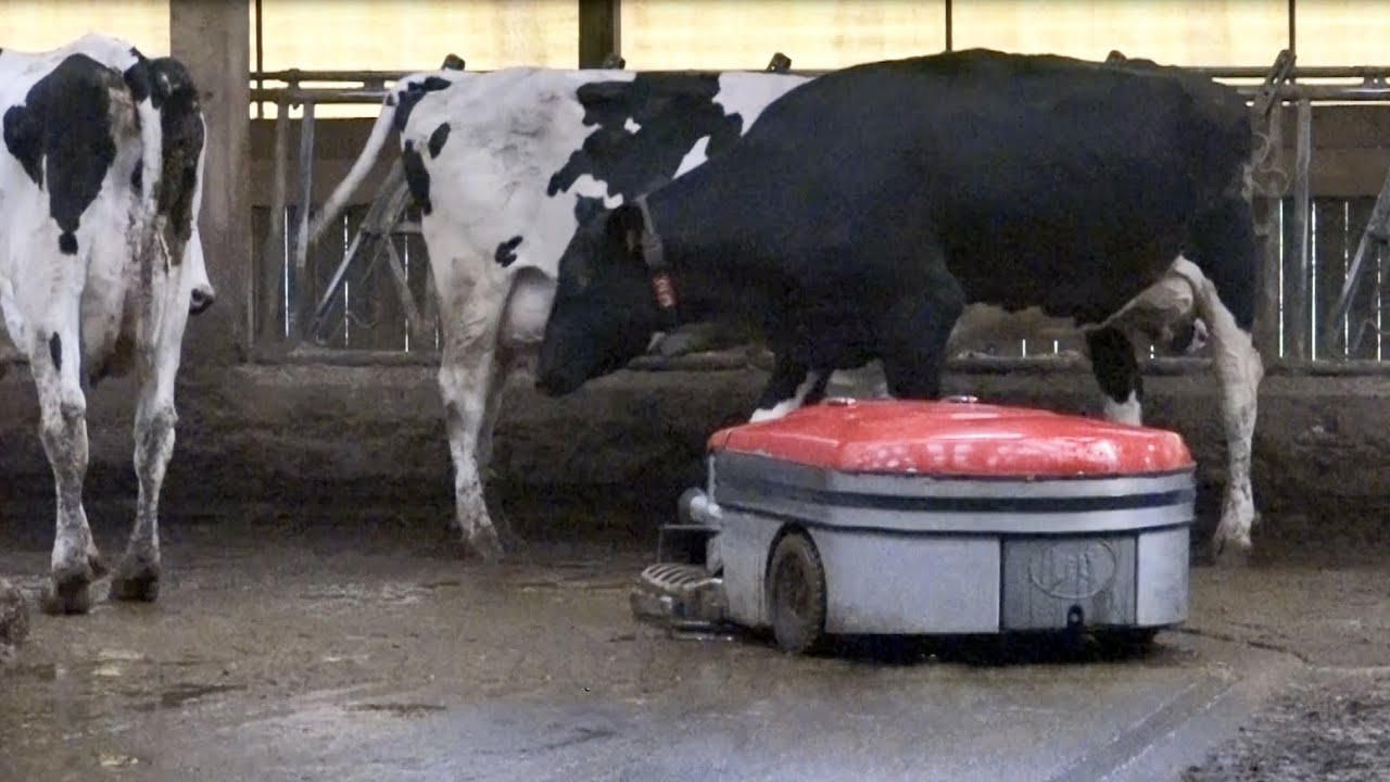 Lely Discovery 120 Collector - Etienne Simon (English)
