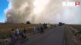 Ogromny pożar pól ze zbożem DRON [3.07.2015 Osiek]