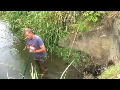 The Restoration of Scottish Thistle Farm - SE01E03 - July