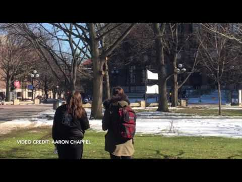 University of Michigan Police Chase