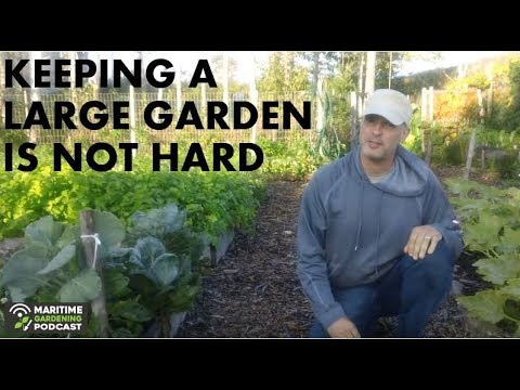 Keeping A Large Garden Is Not Hard