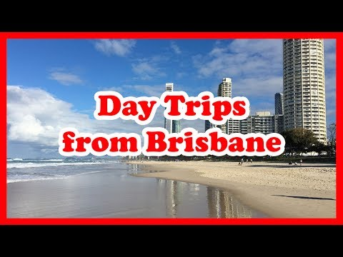 5 Top-Rated Day Trips from Brisbane, Queensland | Australia Day Tours Guide