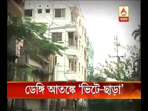 People leaving homes due to the Dengue panic at South Dumdum
