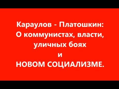 Караулов -  Платошкин. О коммунистах, власти, уличных боях и Новом социализме