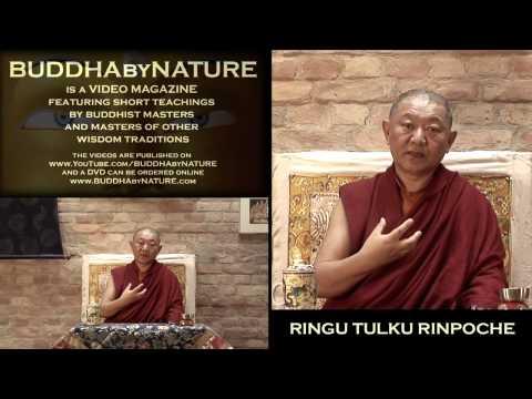 RINGU TULKU on BUDDHA-NATURE