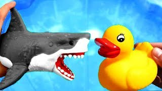 Learn Colors With Sea Wild Animals and Animal Names | Pool Water Colors For Kids | Kids Video P74