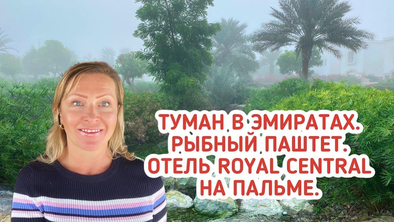 Туман в Эмиратах. Готовлю рыбный паштет. Обзор отеля Royal Central Hotel на Пальма Джумейра.