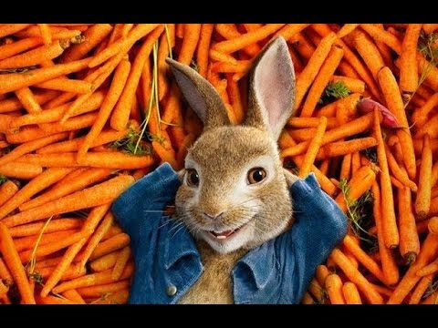 Daily Rabbit Hole #105 / Trump Jr's wife / Obama Portrait Artist / Peter Rabbit