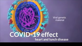 Animation: Sars-cov-2 Virus Transmission Leading To Covid-19  Healthy Blog