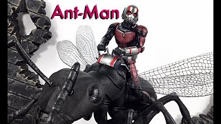 Bandai Tamashii Nations SH Figuarts Marvel Antman & The Wasp Ant-Man & Ant Action Figure Toy Review