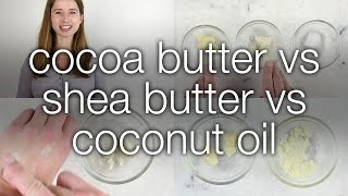 Cocoa Butter vs. Shea Butter vs, Coconut Oil: How are they different?