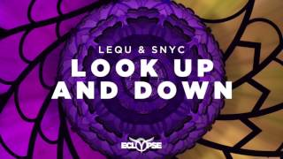 lequ snyc   look up down