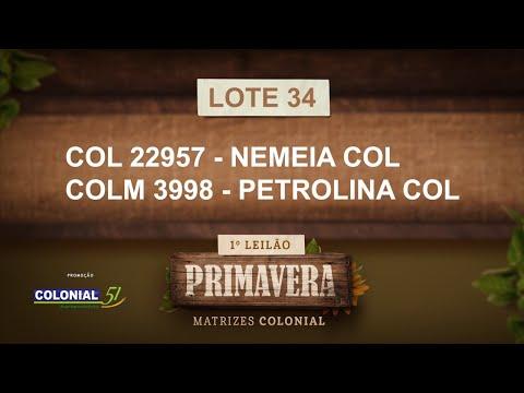 LOTE 34   COL 22957,COLM 3998