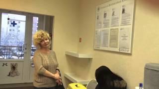 Отзыв ветеринарной клинике — Пиометра, удаление матки кошке — Марина Геннадьевна
