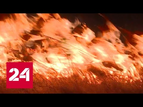 Протяженность степных пожаров в Хакасии достигла сорока километров - Россия 24