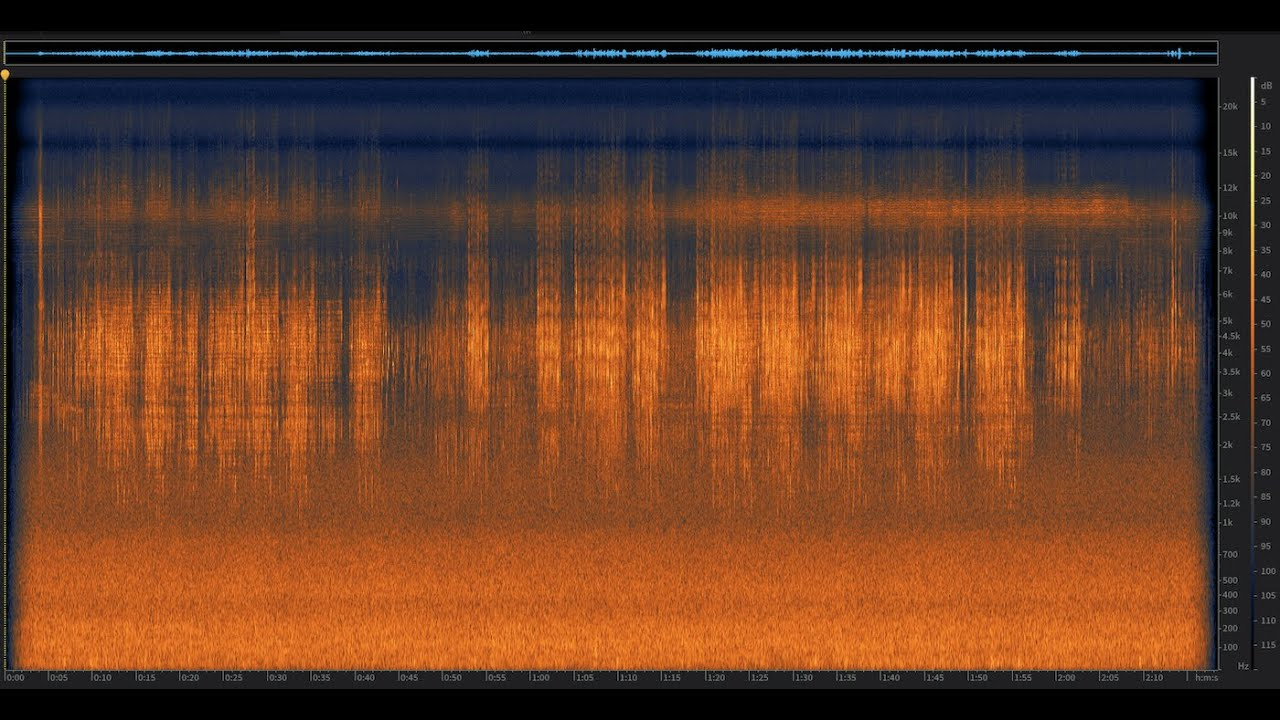 Barn Swallows: Big Sur, California | Spectrogram Follow