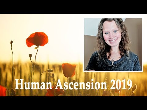 2019 Ascension Energy | Raising Dimensional Consciousness | Abbey Normal's Wisdom Quest