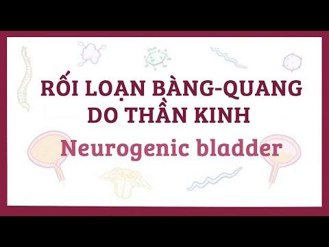 Bệnh rối loạn bàng-quang do thần kinh - nguyên nhân, triệu chứng, chẩn đoán, điều trị, bệnh lý
