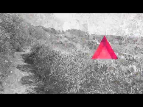Agnosy - When Daylight Reveals The Torture LP FULL ALBUM (2019 - Crust Punk) from YouTube · Duration:  31 minutes 59 seconds
